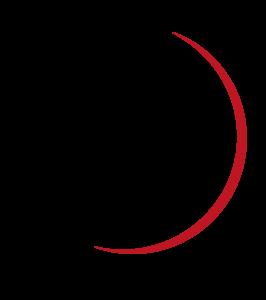 Logo Loup Noir édition